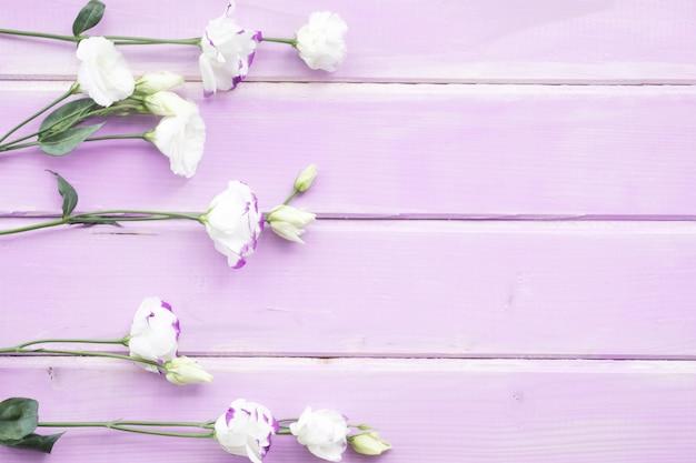 Witte bloemen met knop op roze geschilderde houten achtergrond