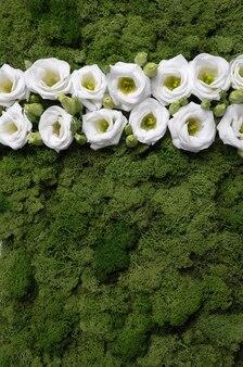 Witte bloemen op een groen mospatroon.