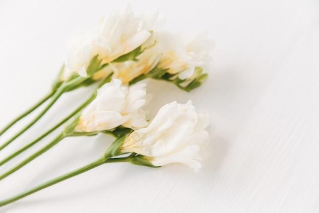 Witte bloemen op het hout. plat leggen. valentijnsdag. bloem achtergrond.