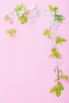 Witte bloemen op roze papieren oppervlak