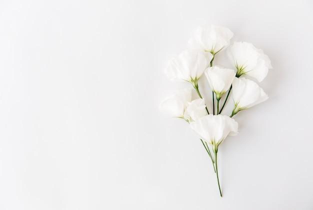 Witte bloemen samenstelling. plat leggen, geïsoleerd op wit. bloemen achtergrond.