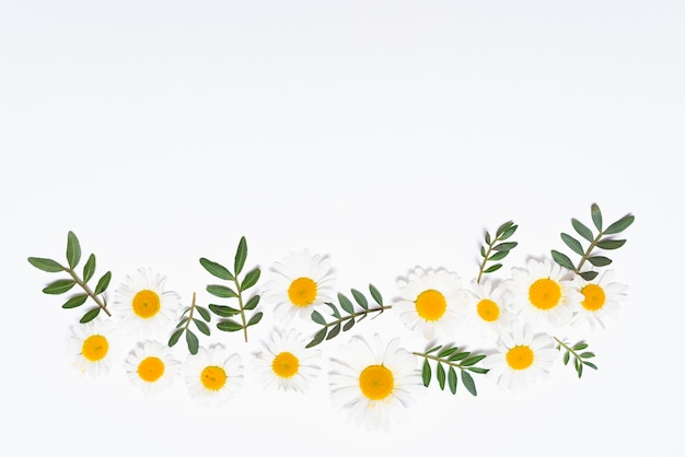 Witte bloemen samenstelling