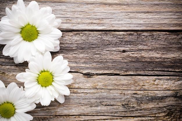 Witte bloemen.