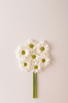 Witte chrysant bloemen gerangschikt in een cirkel op een witte achtergrond. monochromatische kleuren. bruiloft lente concept. plat leggen.