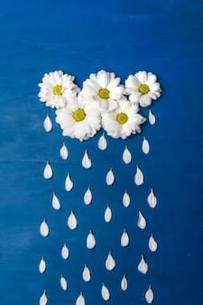 Witte chrysanten in de vorm van wolken, en de bloemblaadjes regendruppels. lente of zomer achtergrond met kopie ruimte voor tekst