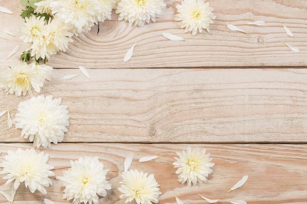 Witte chrysanten op houten achtergrond