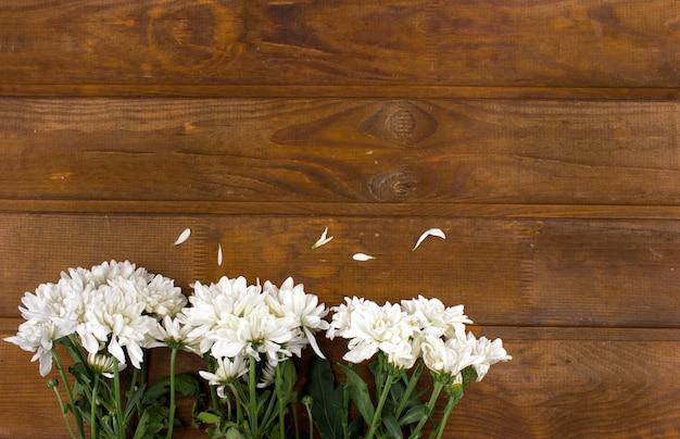 Witte chrysantenbloemen op een bruine houten achtergrond