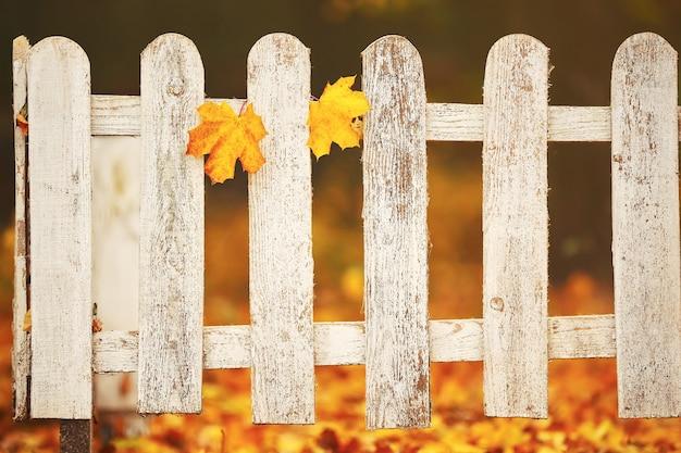 Witte close-up houten hek met twee gele bladeren erop.