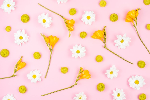 Witte en gele bloemen op roze achtergrond