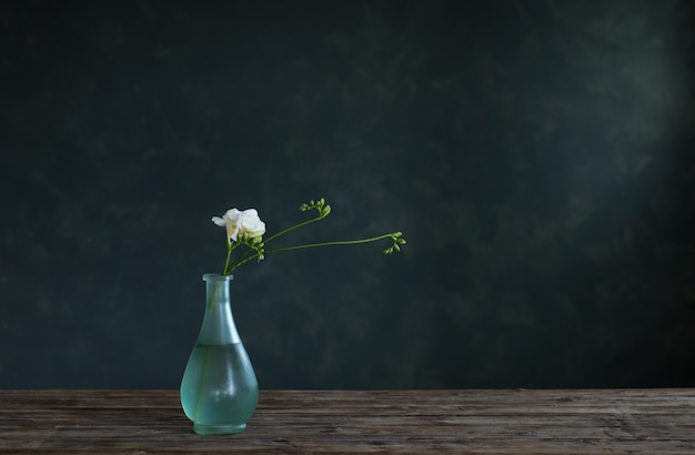 Witte freesia in glazen vaas op donkere achtergrond
