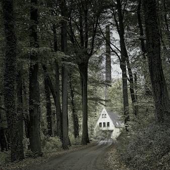 Witte hut