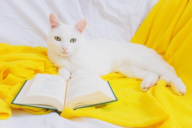 Witte kat met groene ogen op een sofa met een gele plaid en een boek.