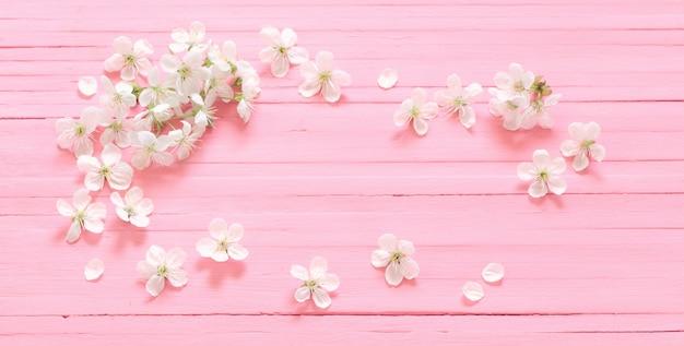 Witte kersenbloemen op roze houten oppervlak