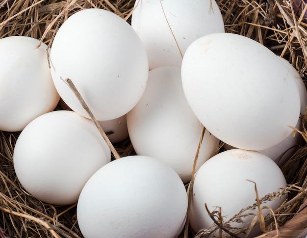 Witte kippeneieren in een close-up van de hooimand, hoogste mening.