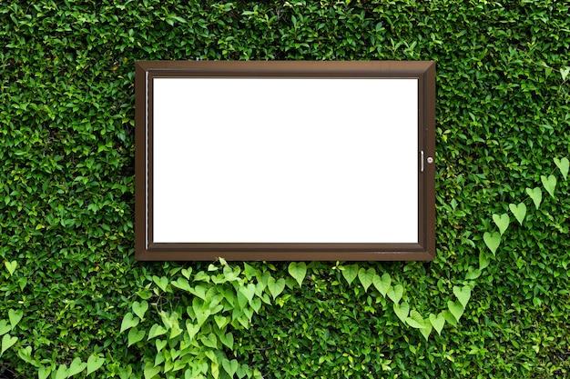 Witte kleur in aluminium frame op groene bladeren textuur achtergrond met uitknippad in frame