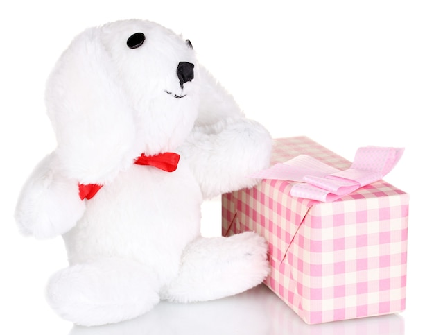 Witte konijntje en geschenkdoos geïsoleerd op wit