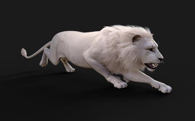 Witte leeuw handelingen en poses geïsoleerd op donkere zwarte achtergrond met uitknippad lion king