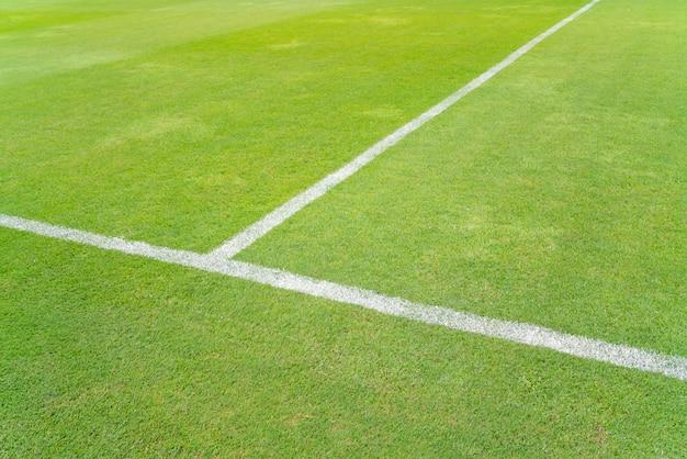 Witte lijn op een groen grasvoetbal, het midden van het voetbalgebied.