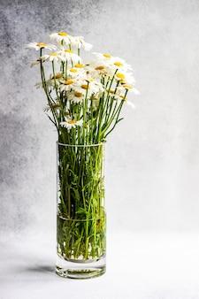 Witte margrietbloemen in vasea's