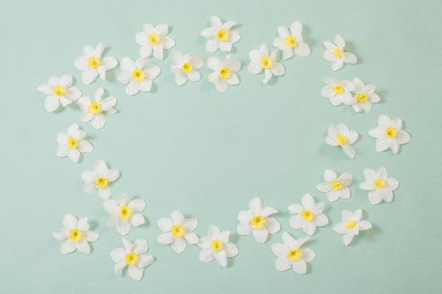 Witte narcissen op groenboekachtergrond