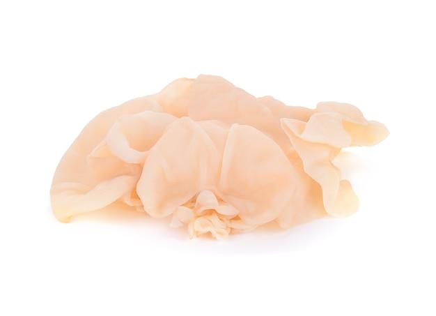 Witte oorpaddestoel of witte geleipaddestoel die op witte achtergrond wordt geïsoleerd
