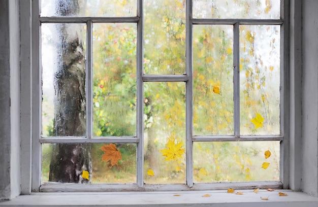 Witte oude houten raam met regendruppels en herfstbladeren