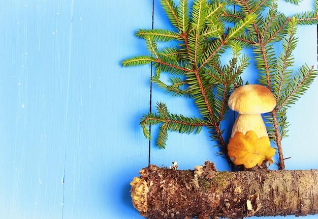 Witte paddenstoel onder sparren op een houten achtergrondstijl plat bovenaanzicht van de bosbedekking van de ma...