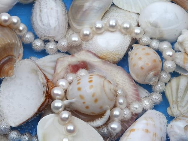 Witte parelhalsband op mariene shellachtergrond. close-up shot. bovenaanzicht