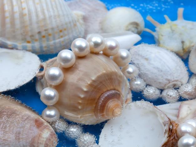 Witte parelhalsband op mariene shellachtergrond. close-up shot