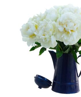 Witte pioen bloeit boeket in blauwe pot geïsoleerd op een witte achtergrond