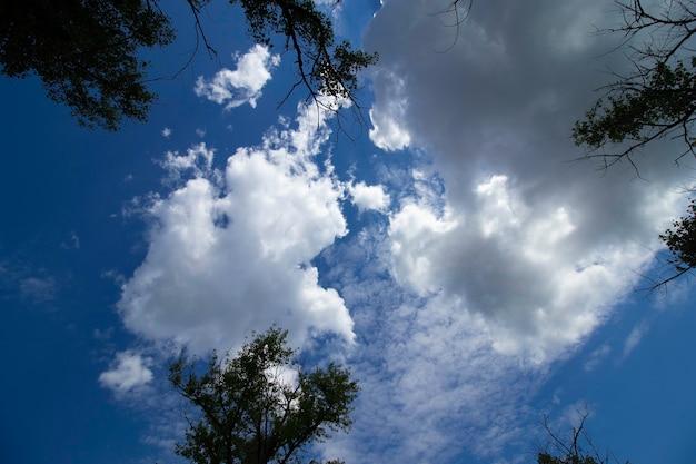 Witte pluizige wolken op een zonnige dag in een blauwe lucht op een zomerdag