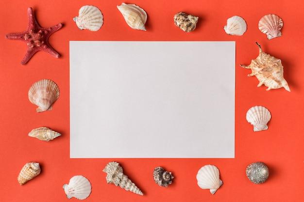 Witte rechthoek met frame van schelpen. levend koraal. op achtergrond plat lag. kopieer ruimte voor tekst