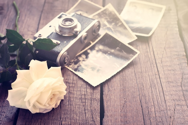 Witte roos, oude foto's en camera