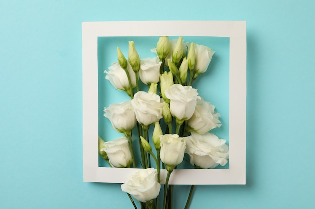 Witte rozen en frame op blauwe achtergrond