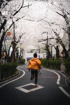 Witte sakura bloeiend op een straat in japan
