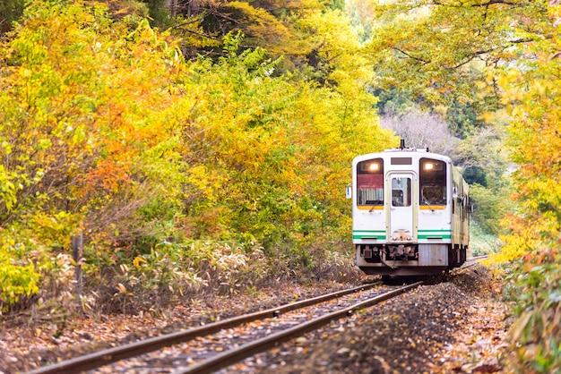 Witte trein commuter fukushima japan