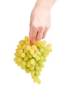 Witte tros druiven in handen geïsoleerd op een witte achtergrond