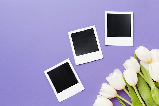 Witte tulpenbloemen met polaroid lege foto's