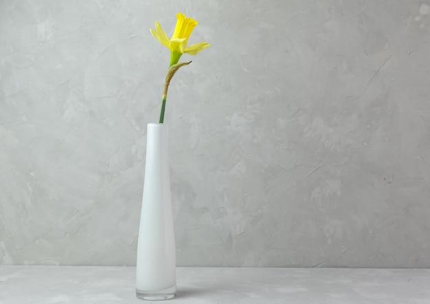 Witte vaas met een gele narcis bloem op een grijze achtergrond. minimalisme. horizontale oriëntatie. plaats voor tekst