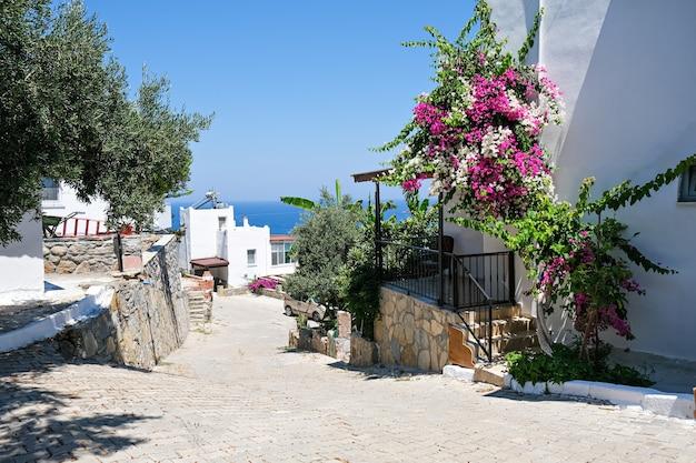 Witte vakantievilla's op resort met uitzicht op zee en palmbomen en bloemen.
