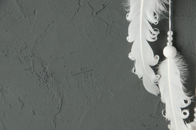 Witte veren op grijs