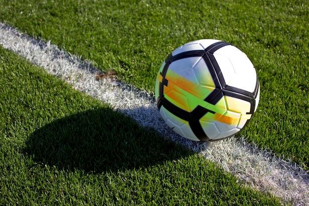 Witte voetbalbal in de poort op een groen grasrijk voetbalgebied