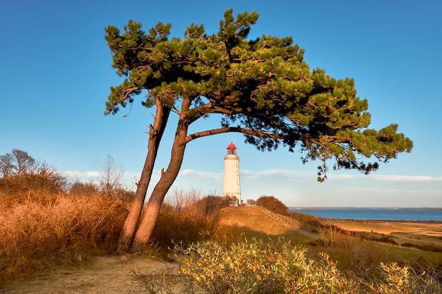 Witte vuurtoren dornbusch op hiddensee-eiland op oostzee in noord-duitsland in de herfst