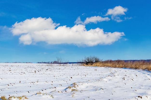 Witte wolk in de blauwe lucht boven een met sneeuw bedekt veld