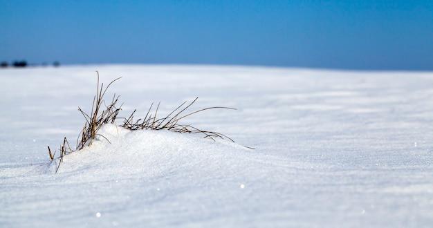 Witte zuivere sneeuw na sneeuwstormen en sneeuwval, diepe sneeuwbanken bij zonnig weer