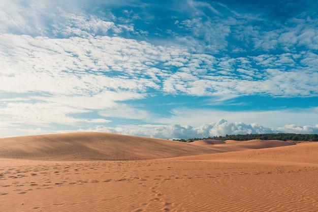 Woestijn met blauwe hemel