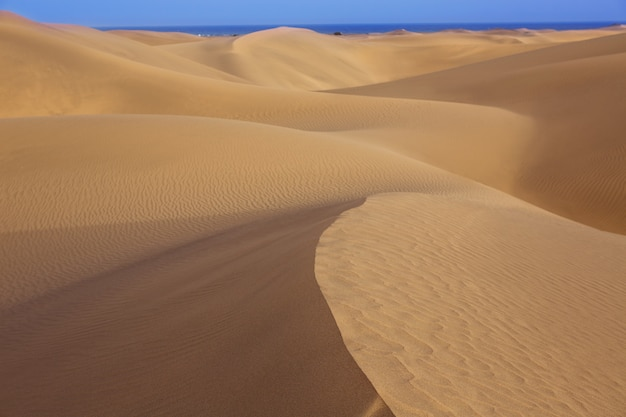 Woestijn zandduinen in maspalomas gran canaria
