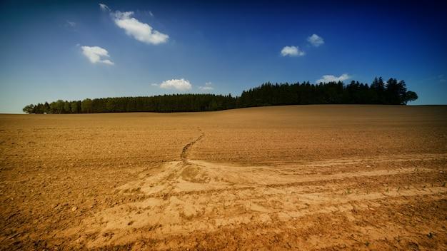 Woestijnland en bos Gratis Foto