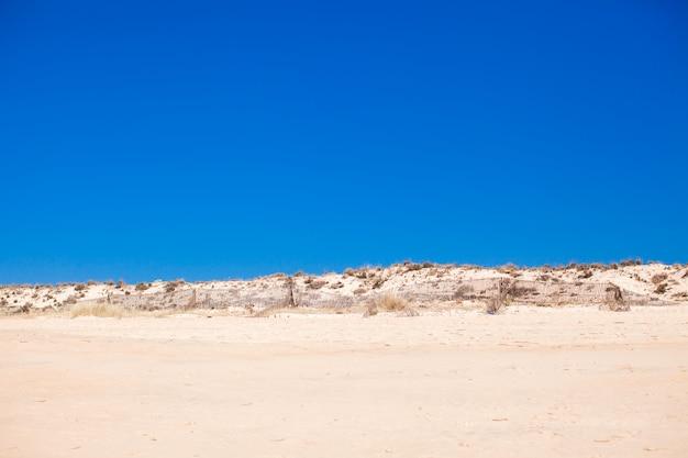 Woestijnlandschap en exotisch uitzicht op de portugese kustplaats
