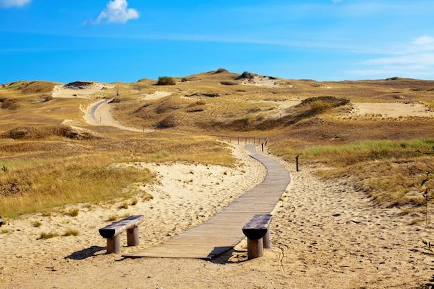 Woestijnlandschap in curonian spit in litouwen